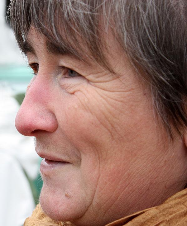 Diane Gonthier textile arts